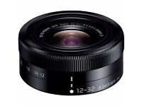 Panasonic Lumix 12-32mm lens. For M4/3 Cameras