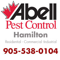 Guaranteed Pest Control Services in Hamilton/905-538-0104