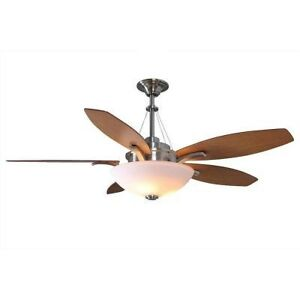 Hampton Bay Brookedale 60 inch Ceiling Fan with Light