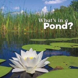 What's in a Pond? by Rustad, Martha E. H. -Hcover