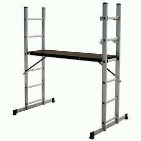 Multi ladder platform