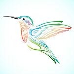 Flyingbird Sports & Outdoor