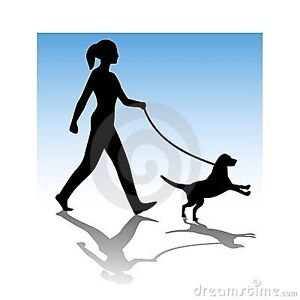 Dog walking in Acton available