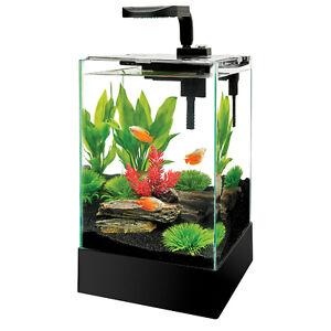 Complete Aqueon Cue 5 Gallon Rimless LED Aquarium Fish Tank Kit