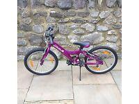 Girls giant taffy mountain bike