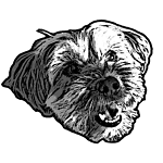 fuzzydogvintage-9