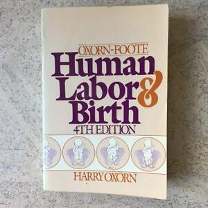 Human Labor & Birth