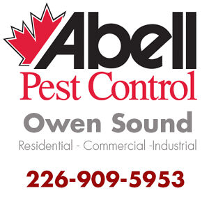 Guaranteed Pest Control Services for Owen Sound/226-909-5953