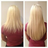 Professional hair extensions $300