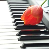 Need a piano studio in North York or Makham