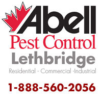 Guaranteed Pest Control Services for Lethbridge/1-888-560-2056