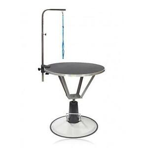 Pleasant Grooming Table Kijiji In Ontario Buy Sell Save With Home Interior And Landscaping Ologienasavecom
