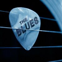 BLUES SINGER WANTED!