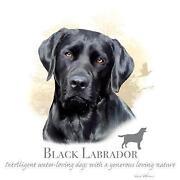 T-shirt mit Hundemotiv