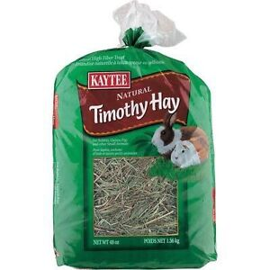 Wanted- Timothy Hay