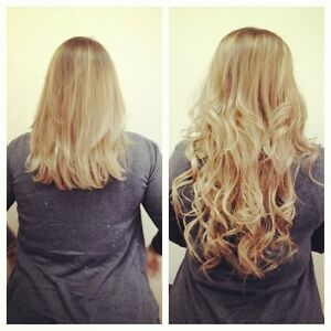 Hair Extensions Master Course Certification – Limited Spots London Ontario image 2