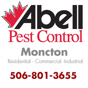 Guaranteed Pest Control Services for Moncton/506-801-3655