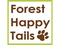 Forest Happy Tails - Professional individual providing dog walking, pet sitting & Dog Boarding