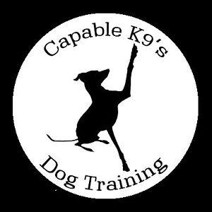 Capable K9s Dog Training Bendigo Bendigo City Preview