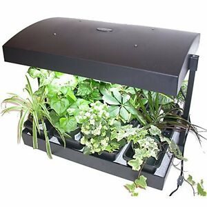 Indoor Plant Supplies, Hydroponic, Plants Fertilizer, and More!