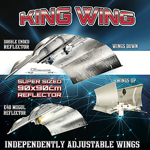 King wing 1000 wt ballast kit or separate