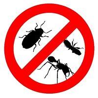 Quality Pest Control! Amazing Results! One Visit Guaranteed
