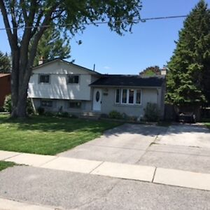 MLS# 583856    234 Byron Ave Dorchester