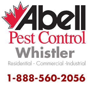 Guaranteed Pest Control Services for Whistler/1-888-560-2056