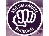 Apprentice Karate Instructors Needed NOW! No Experience Needed!!