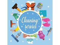 CLEANING SERVICES AMAZING PROFESSIONAL CLEANER DOMESTIC