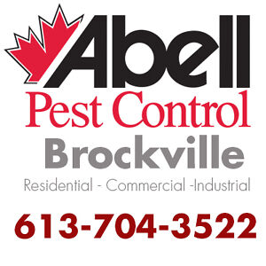 Guaranteed Pest Control Services for Brockville/613-704-3522