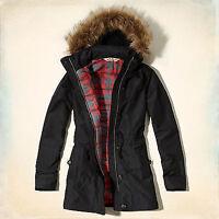 Hollister parka / coat