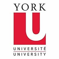 York University Tutor Available now!