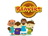 Spaces now available for girls and boys to join Beavers and Cubs this September