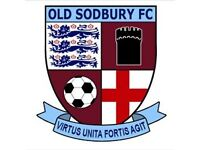 Old Sodbury Fc looking for players