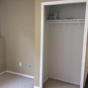 Roommate / Roommates wanted