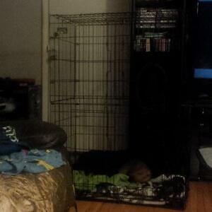 cat / or other pet Playhouse cage