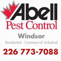 Guaranteed Pest Control Services for Windsor/226-773-7088