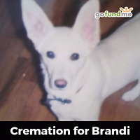 Cremation billing needs to be paid.