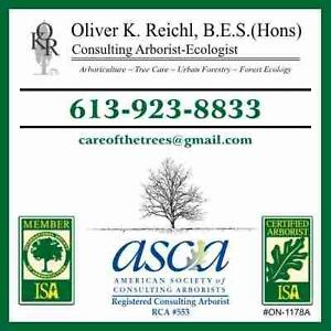 ISA Certified Arborist, Consultant for Kingston, Ottawa, Toronto