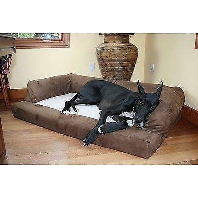 big dog bed petco xxl great dane orthopedic foam sofa couch extra