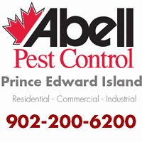 Guaranteed Pest Control Services for PEI/902-200-6719