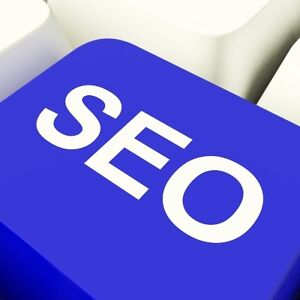 SEO Ranking Services for Small Business Cambridge Kitchener Area image 1