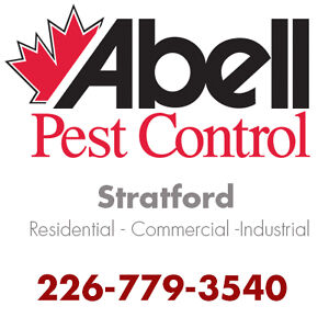 Guaranteed Pest Control Services for Stratford/226-779-3540