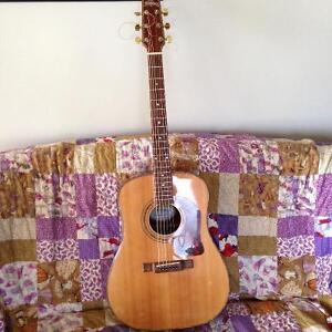 Solid top Washburn Dreadnought acoustic guitar