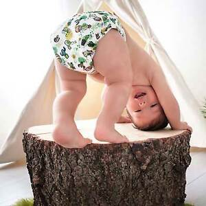 Bummis Pure 6 Pack - The Best Diapers You Haven't Tried Yet!