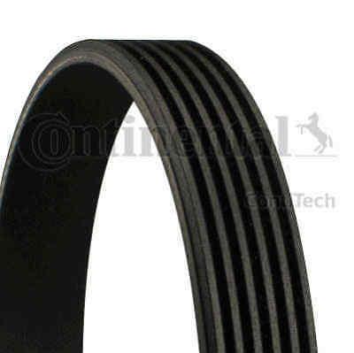 Contitech Continental V Ribbed Belt Drive Alternator 6PK1000   5 YEAR WARRANTY