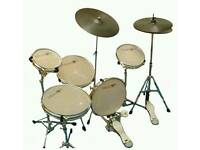 Dragon practice drum kit