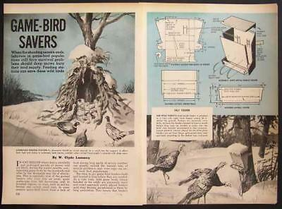 Game Bird Feeders How-To build PLANS 2 Designs Turkey Quail +