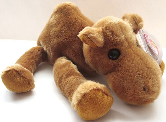 Humphrey the Camel